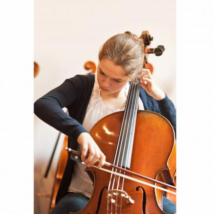 Violoncello Nr. 750